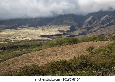 dramatic landscape at hawaiian island