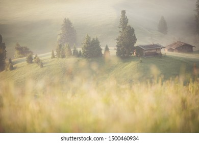 Dramatic misty fog with rolling flower and green grass hills with log cabins during summer in Ski resort Seiser alm, South Tyrol, Italy.
