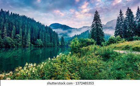 Dramatic morning scene of Lacu Rosu lake. Misty summer sunrise in Harghita County, Romania, Europe. Beauty of nature concept background.