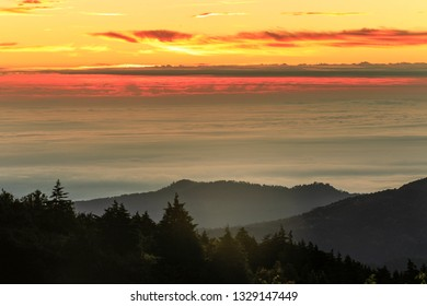 Dramatic morning sunrise at dawn over the sea of mist covered the mountain valley landscape. Silhouette of pine tree forest. Beautiful foggy landscape