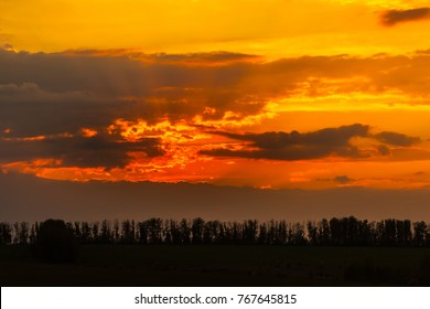 A dramatic orange red yellow sky, a surprisingly colorful moment. Forest silhouette at sunset.