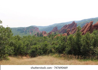 Dramatic red sandstone formations jutting out of the ground, surrounded by trees, shrubs and grasses in the mountains at Roxborough State Park, Colorado, USA