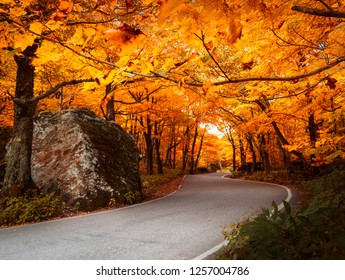 Dramatic road winding through state park in Vermont during autumn with fall colors showing in the foliage