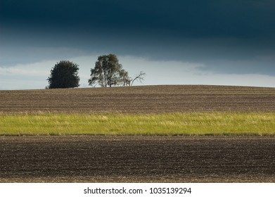 Dramatic sky above fields with group of trees separated by grass line