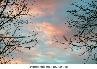 Dramatic sky at sunset in the woods