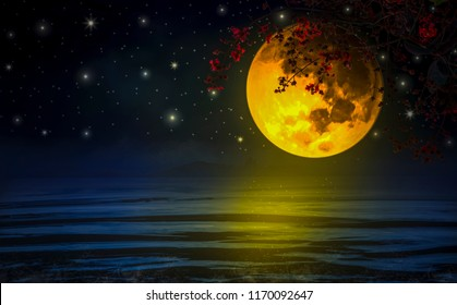 Dramatic Sky, a super-yellow moon with branches and red flowers across Floating above  sea, In atmospher nigh miraculouslyt, Concept of beautiful and amazing nature.