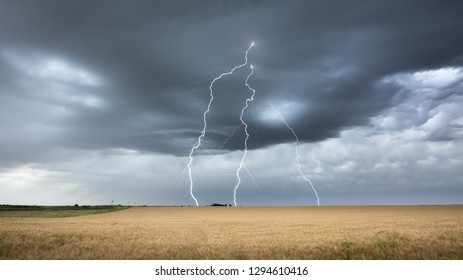 Dramatic storm and thunderbolt in a field of wheat. La pampa Argentina