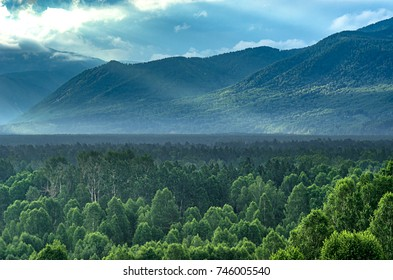 Dramatic sunrise in the mountains with thick evergreen forest in foreground, Altai Mountains, Kazakhstan