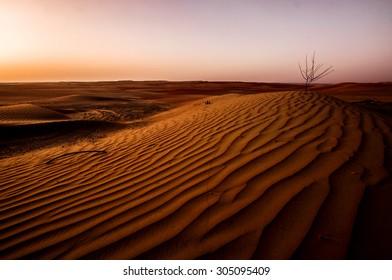 Dramatic sunrise view of the Liwa Desert in the Western Region of Abu Dhabi