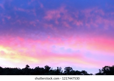 Dramatic of sunset with cloud sky and silhouette trees