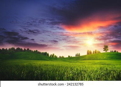 Dramatic sunset on the summer meadow, natural landscape