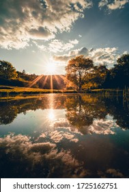 Dramatic sunset over the beautiful crystal blue lake (pond) with green tree and meadow on background. Moody shot of tree in the park in springtime with water reflection in the lake (river).