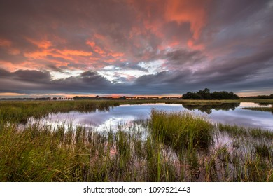 Dramatic sunset over marshland in natural landscape in Westerwolde nature reserve in the Netherlands