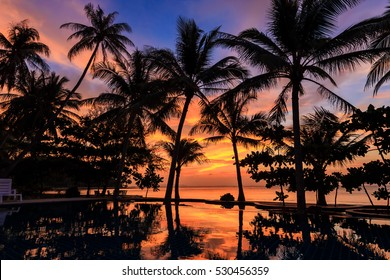 Dramatic Sunset with silhuettes palm and reflection in swimming pool