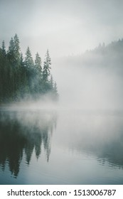 Dramatic view during a beautiful foggy morning with spruce fir forest reflected in the water of a lake in Smida, Romania. Coniferous forest trees reflected in a mountaineous calm lake.