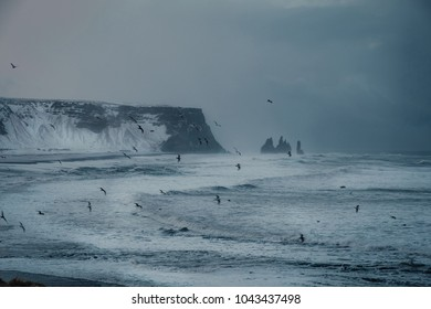 Dramatic winter landscape of Icelandic Black Sand Beach Reynisfjara near town Vik. Stormy sea shore of volcanic black beach and snow capped mountains in distance.