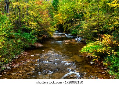 Draped in the hues of autumn, Leatherwood Creek a tributary to Elk River, Webster County, West Virginia, USA