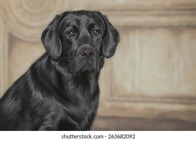 Drawing dog black Labrador, portrait, on a color background