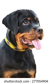Drawing of the dog rottweiler, tricolor, portrait on a white background