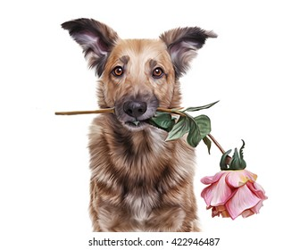 Drawing  Mixed breed dog holding a flower in the mouth, portrait on a white background