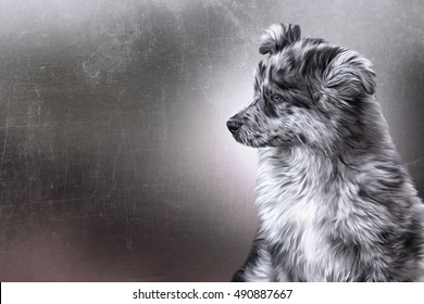 Drawing  Mixed breed dog, puppy portrait oil painting on old vintage color grunge paper background
