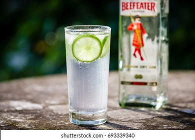 DRAZOVICE - JUNE 25: Gin & Tonic cocktail in highball glass and a bottle of gin on June 25, 2016 in Drazovice, Czech Republic. It was introduced by the army of the British East India Company in India.