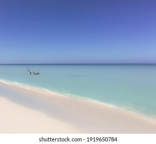 Dream beach concept with white sand turquoise water, blue sky and dry mangrove tree in the sea. Misty and smooth texture with a dreamlike appearance.