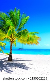 Dream beach with palm on white sand and sailing yacht in turquoise ocean