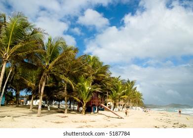 Dream beach from Play El Aqua. Margarita Island, Venezuela.
