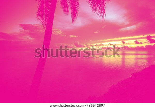 Dream Photo Decor Miami Style Pop Stock Photo (Edit Now