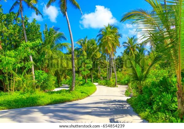 Dream Scape Escape On Maldives Stock Photo (Edit Now) 654854239