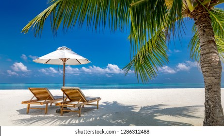 Dream scene. Beautiful palm tree over white sand beach, two sun chairs, loungers near sea. Wonderful summer nature view, tropical landscape. Panoramic scenery for vacation and holiday background