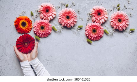 Dreaming concept. Creative Spring bouquet Gerbera flowers in woman hands on the table of concrete texture. 8 march holiday. Design pattern.