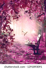 Dreamscape and the fairy tale concept. Sunlight through the branches of trees and the mist of the morning.Surreal landscape.Fantasy space in park and wood bench with white doves.