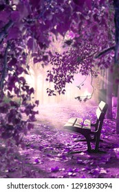 Dreamscape and the fairy tale concept. Sunlight through the branches of trees and the mist of the morning.Surreal landscape.Fantasy space in park and wood bench .