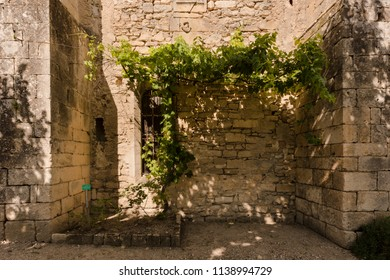 Dreamy place in the monastery garden of St Paul de Mausole in St Remy de Provence. Bouches du Rhone, Provence, France