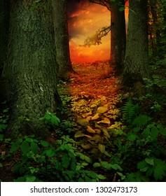 Dreamy red sunset in dark green fantasy forest