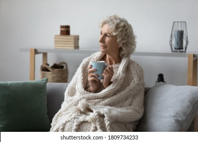 Dreamy satisfied mature woman wrapped warm blanket relaxing at home, sitting on cozy couch, happy smiling middle aged female drinking tea or coffee, dreaming, enjoying free time, weekend