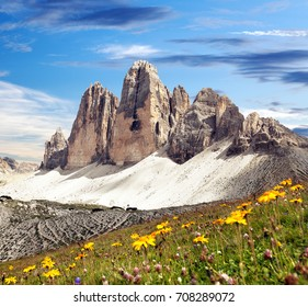Drei Zinnen or Tre Cime di Lavaredo with beautiful flowering meadow, Sextener Dolomiten or Dolomiti di Sesto, South Tirol, Dolomiten mountains view, Italian Alps
