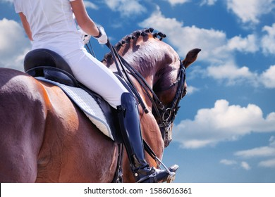 Dressage: horse and rider against blue sky