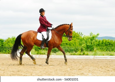 Dressage test for young horses