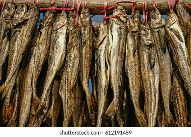 dried Alaska pollack