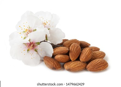 Dried almonds with almond blossom, isolated on white background