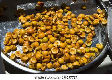 Dried apricots in the season
