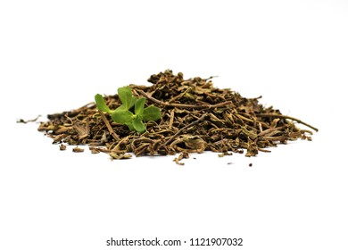 Dried bacopa medical herb, known from Ayurveda as Brahmi - isolated on a white background