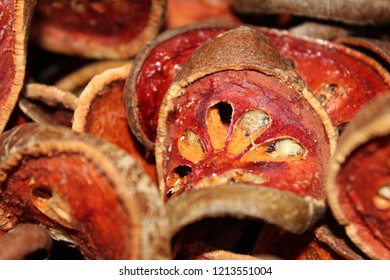 Dried bael fruit background. Close up dried herb. Many of slices of bael fruit .