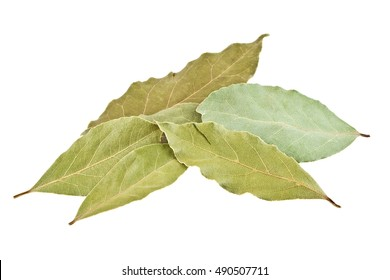 Dried bay laurel leaves isolated on a white background close up