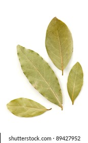 Dried bay leaves isolated on white