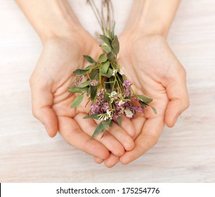 dried bouquet of wildflowers in the hands of somebody
