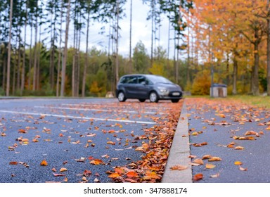Dried brown and colorful red autumn or fall leaves lying scattered on the asphalt in a parking lot in a concept of seasons, low angle view along the curb